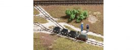 Auhagen 41700 Feldbahnset - Attrappe Spur H0f online kaufen