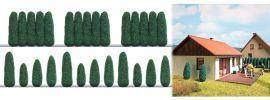 BUSCH 1270 Thujen Lebensbäume Fertigmodelle Spur H0 online kaufen
