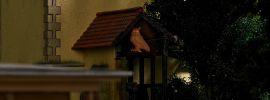 BUSCH 5418 Eule mit Leuchtaugen Fertigmodell Spur  H0 online kaufen