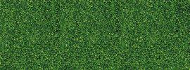 BUSCH 7053 Streupulver mittelgrün | 40 Gramm Beutel | Spur H0 + N + Z online kaufen