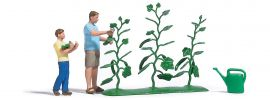 BUSCH 7877 Action Set Gurkenernte Fertigmodell Spur H0 online kaufen