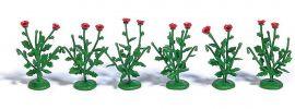 BUSCH 9791 Klatschmohn 40 Stück Bausatz Spur H0 online kaufen