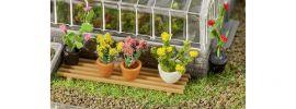 FALLER 181270 Topfpflanzen 6 Stück Fertigmodell 1:87 online kaufen
