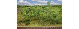 FALLER 181409 Waldrandbäume -sträucher 9 Stück 75mm bis 90mm Fertigmodell Spur H0 online kaufen
