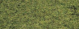 Heki 1574 decovlies Wildgras Savanne   28 cm x 14 cm   Anlagenbau online kaufen
