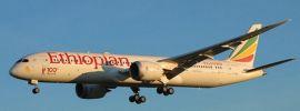 herpa 533966 Ethiopian Airlines Boeing 787-9 Dreamliner - ET-AUQ Frankfurt | Flugzeugmodell 1:500 online kaufen