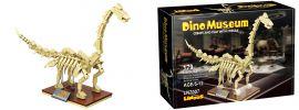 Linoos 7007 Dino Museum 7 | Dinosaurier Baukasten online kaufen