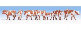 NOCH 15726 Kühe braun-weiß Figuren Spur H0 online kaufen