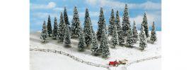 NOCH 26428 Schneetannen 10 Stück | Bäume Spur H0 online kaufen