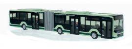 RIETZE 75803 MAN Lions City 2018 OVPS Pirna Busmodell Spur H0 online kaufen