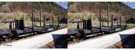 Roco 34581 2-tlg. Set Rungenwagen SSm/s Holzbeladung ÖBB | DC | Spur H0e online kaufen