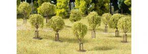 Auhagen 70950 Junge Bäume | 10 Stück | Bäume Spur H0+TT+N kaufen