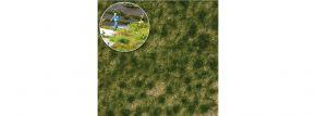 BUSCH 3518 Grasbüschel Spätsommer | Höhe 4 mm | Anlagenbau kaufen