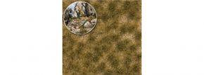 BUSCH 3524 Grasbüschel Herbst | extralang Höhe 6 mm | Anlagenbau kaufen