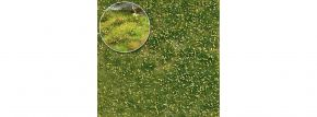 BUSCH 3541 Unkrautbüschel Frühling | Höhe 4 mm | Anlagenbau kaufen