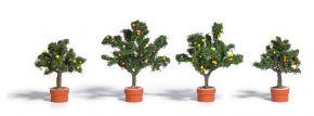 BUSCH 6619 Zitrusbäume 4 Stück Spur H0 kaufen