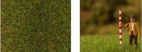 FALLER 170772 Streufasern Frühsommerwiese | 6 mm | 30 Gramm | Anlagenbau kaufen