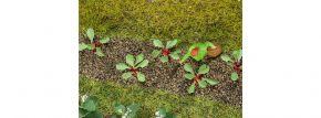 FALLER 181273 Rhabarberpflanzen 28 Stück Fertigmodelle 1:87 kaufen