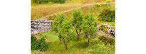FALLER 181378 Erlen | Höhe 60 - 70mm | 4 Stück | Spur H0/TT/N kaufen