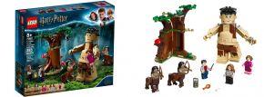 LEGO 75967 Der Verbotene Wald: Begegnung mit Umbridge | LEGO Harry Potter kaufen