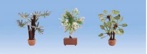 NOCH 14023 Mediterrane Pflanzen 3 Stück Fertigmodelle 1:87 kaufen