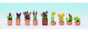 NOCH 14080 Zierpflanzen in kleinen Blumentöpfen Spur N kaufen