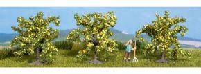 NOCH 25115 Zitronenbäume | 3 Stück Zitrusbäume | Spur H0 kaufen