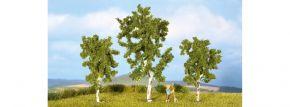 NOCH 25120 Birken | 8 bis 10 cm | 3 Stück | Spur H0 kaufen