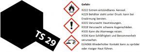 TAMIYA TS-29 Sprayfarbe Schwarz-Seidenmatt #85029 kaufen