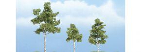 WOODLAND SCENICS WTR1605 Birken   3 Stück   Höhe 7,5 cm, 5 cm und 4 cm   für Spur H0, TT, N kaufen