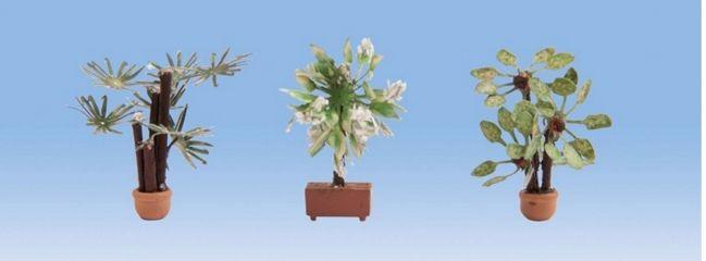 NOCH 14023 Mediterrane Pflanzen 3 Stück Fertigmodelle 1:87