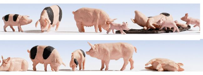 NOCH 15712 Schweine 12 Stück Spur H0