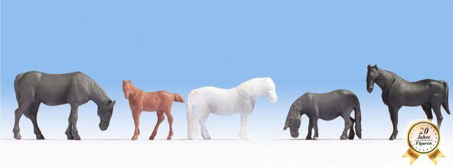 NOCH 18215 Pferde  5 Figuren HobbySerie Spur H0