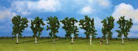 NOCH 25096 Birken 10 cm | 7 Stück | alle Spurweiten kaufen