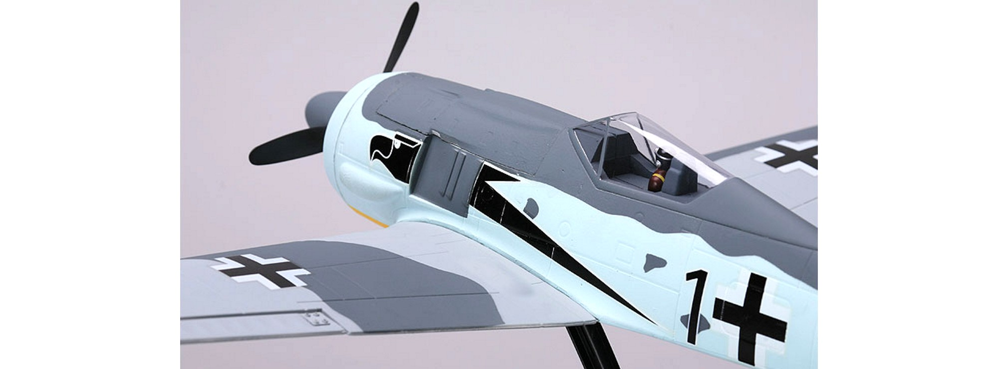 Ausverkauft Hype 025 1020 Focke Wulf 190 Arf Rc Flugzeug Fertigmodell